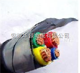 铠装电缆 VV22 3*95