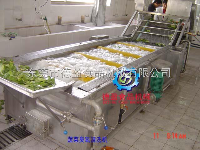 DY4000-特价蔬菜臭氧清洗机   毛刷抛光清洗机