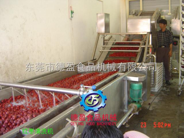 DY-2500-小型红枣清洗机