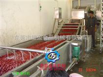 DY-2500小型红枣清洗机