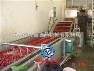 DY-2500小型红枣金沙999s