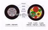 变频电缆BPVVP3
