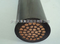 FYGC-10*1.5硅橡胶控制电缆