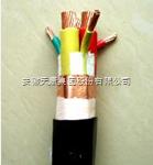 供应天康阻燃变频电缆ZR-BPYJVP-3*95+3*16