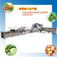 WA-净菜加工生产线