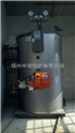 LHS0.5-0.7-YQ-中瑞立式燃气蒸汽锅炉