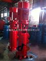 供应XBD3.2/8.3.5-65DL×2消防泵流量 消防泵参数 消防泵机组