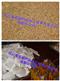 黄秋葵保健茶设备,黄秋葵袋泡茶设备,黄秋葵茶设备