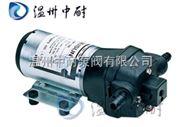 DP型微型隔膜泵,塑料隔膜泵,电动隔膜泵