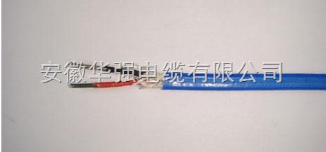 热电偶补偿导线KX-HA-FPFP 1*2*1.5