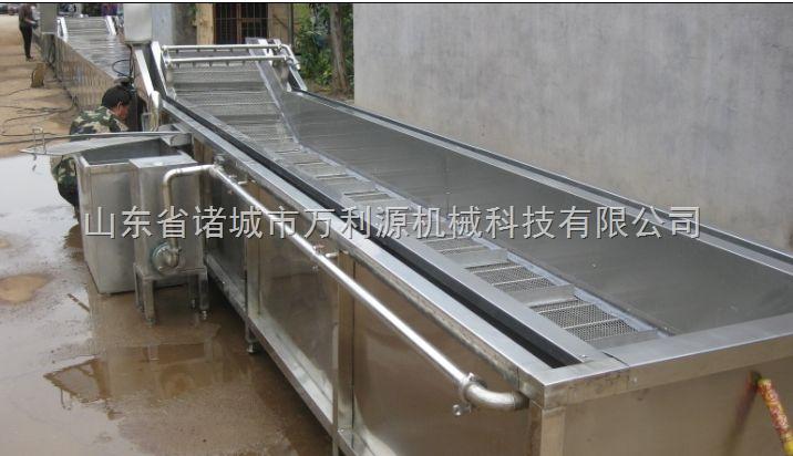 蔬菜清洗流水线,蔬菜加工流水线设备,蔬菜清洗机