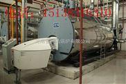 10吨天然气蒸汽锅炉,10吨天然气蒸汽锅炉厂家