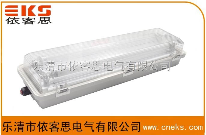 BYS51-2*40防爆防腐全塑荧光灯(IIC双管)价格
