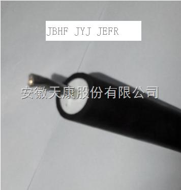 供应天康高压电机引接线JBHF  JEFR  JYJ