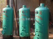 厂家直销锅炉 蒸馒头专用锅炉 环保节能锅炉
