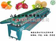 四川柠檬分果机洗果机厂家