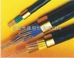 KJVVP2R铜带屏蔽仪表控制软电缆