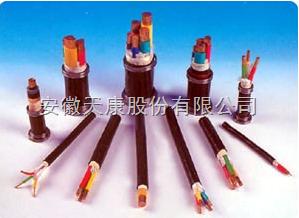 BPVVPP2-3*10+3*6铜带绕包屏蔽变频电力电缆