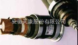 ZR-BPYJVP12R变频电缆变频器回路电缆