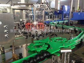 BG玻璃瓶装饮料灌装机