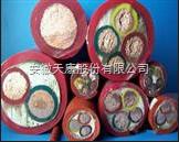 YGCP-3*120+1*70铜丝编织硅橡胶电力软电缆