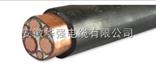 变频电缆zr-bpyjvtp2-1kv-3*50+1*25