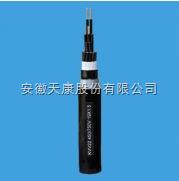 ZR-F46-22(FV22)耐高温氟塑料绝缘电力电缆
