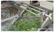 根茎类蔬菜水浴式清洗机