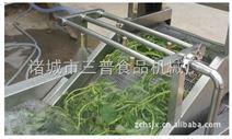 根莖類蔬菜水浴式清洗機