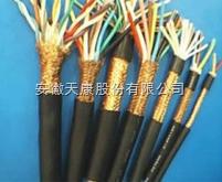 IA-DJYPVP-3*2*1.0本安型计算机电缆