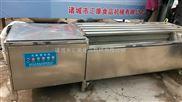 MQX-1800ing-玛卡毛刷清洗机 葛根毛刷清洗机 红薯毛刷清洗机