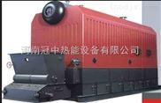 河南冠中自动链条型燃煤蒸汽锅炉