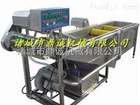 白萝卜高压喷淋清洗机/蔬菜清洗机/毛辊清洗机