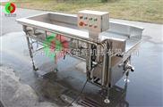 新款涡流洗土豆丝机