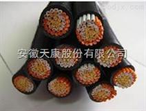 ZR-KVVP2-24*1.5銅帶屏蔽阻燃控制電纜