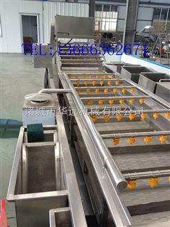 毛豆清洗机  自动果蔬加工设备系列 毛豆清洗生产线