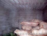 上海速冻冷库产品,北京英鹏速冻冷库价格,供应冷库厂家
