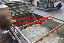 红枣清洗流水线