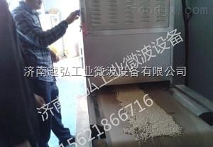 供应广东微波干燥杀菌设备有限公司 大豆微波烘焙设备生产厂