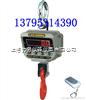 OCS-XZ-AAE桂林电子吊钩秤/直视吊秤(铝合金外壳)