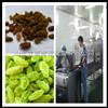 新疆地区葡萄干杀菌设备生产制造商立威微波