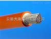 JG(JHG)-1*25硅橡胶电机引接线